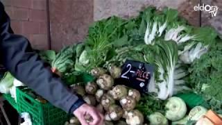 Visite du marché Cuendet à Bremblens