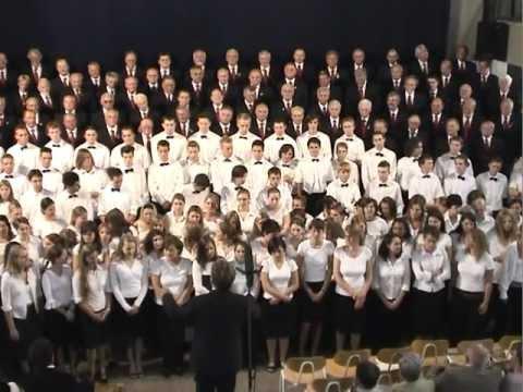 Die Rose, Männerchor Liederkranz Heidelberg-Rohrbach, Leitung: Manfred Bühler