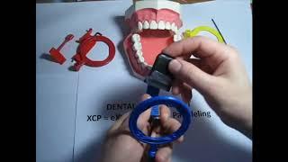 Как использовать держатель снимков для Передних зубов (синий) Периферийный рентген