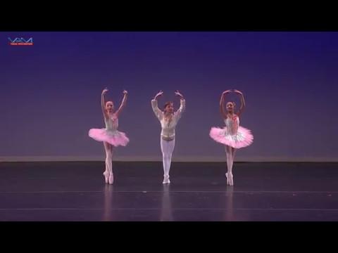 Art Ballet Academy -  Dance of the Mirlitons