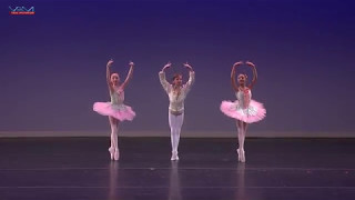 Art Ballet Academy -  Dance of the Mirlitons