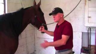 Farrier Quick Takes (Terry Burger): Hoof Stands And Loose Cross-Ties
