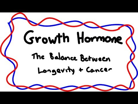 Growth Hormone: The Balance Between Longevity and Cancer : videos