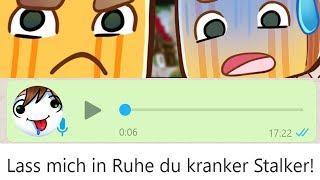 Meine kranken WhatsApp-Sprachnachrichten an Paluten. ☆ Minecraft: Mario Party