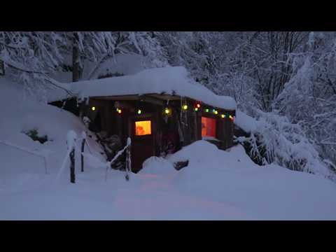 Semi Underground Cabin & Music Studio Alone In The Woods.