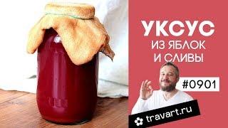 Как приготовить домашний уксус из яблок и слив. Сделать уксус. ТРАВАРТ #0901