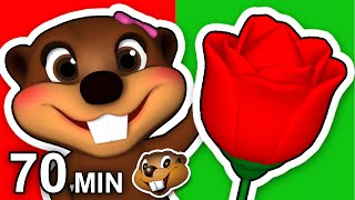 """Red Flower Song"" Plus More 