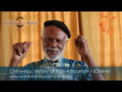 Chinweizu: History of Pan-Africanism I Online Course Promo Video