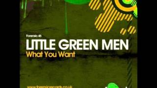 Little Green Men feat. Sandy Mill - What You Want (Dub Mix)