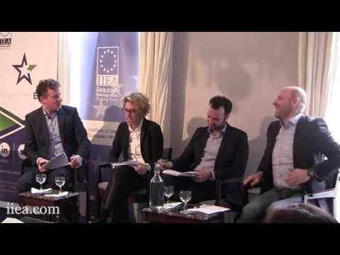 Thinking about the EU27: Expert Views from Across Europe