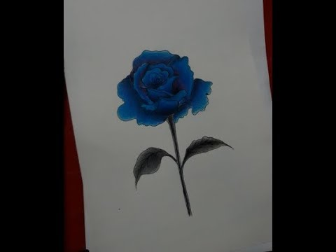 Vẽ hoa hồng xanh_Vẽ tranh galaxy đêm bằng màu dầu   Yami   Draw blue roses