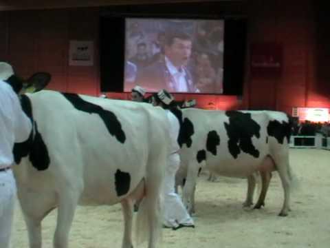 Expo Bulle 2010  Schweizerpsalm und Ranz des Vaches