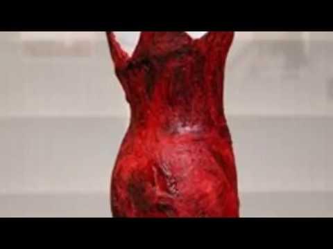 Платье из мяса Леди Гаги превратилось в
