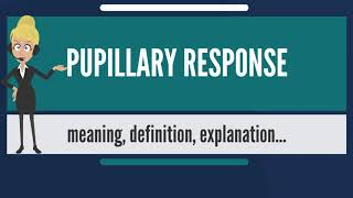What is PUPILLARY RESPONSE? What does PUPILLARY RESPONSE mean? PUPILLARY RESPONSE meaning