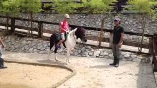 Horse Riding at Farm In The City Malaysia