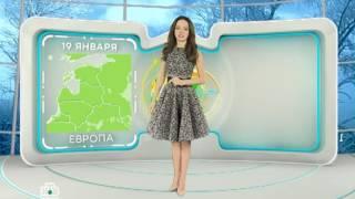 Погода на НТВ Беларусь с Ольгой Венской(, 2017-01-18T23:25:36.000Z)