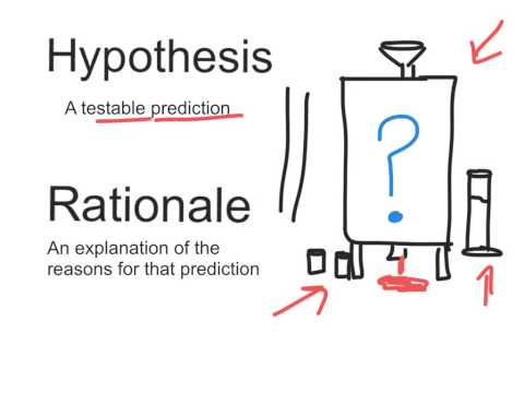 Hypothesis And Rationale