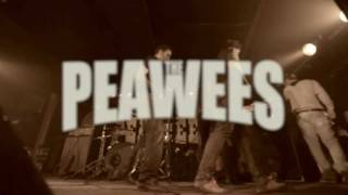 The Peawees - Memories are gone