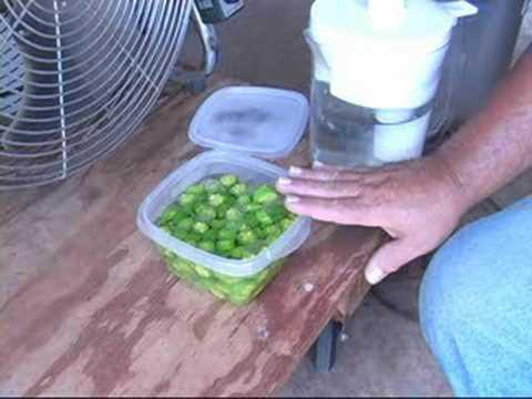 Vegetable Garden -- Freezing Vegetables