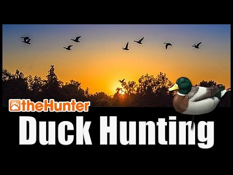 Duck Hunting Tutorial - TheHunter Hunting Game