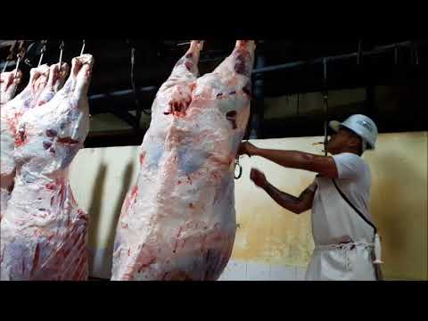 Digos City Slaughterhouse Slaughtering Operation Flow