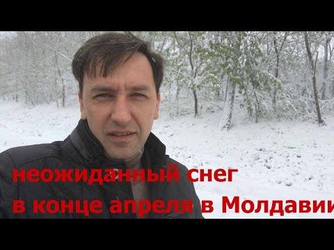 молдавия сайт знакомств md
