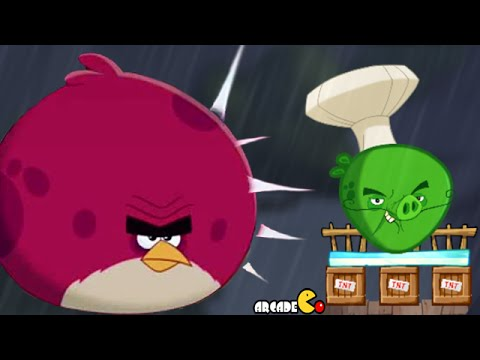 Angry Birds 2 Level 41 50 Bamboo Forest Eggchanted