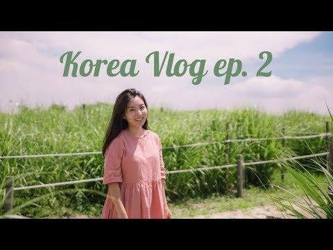 Korea Travel Vlog ep. 2: Seoul Adventures 한국 일상 브이로그 2화