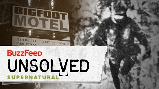 The Harrowing Hunt For Bigfoot thumbnail
