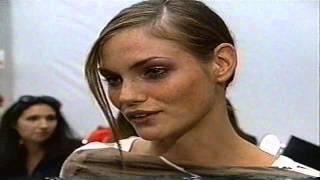 Mini Anden Model Profile 2001
