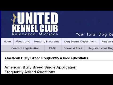 How-To Register A Dog With The American Bully Kennel Club (ABKC)