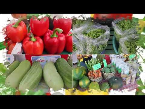 Negros Island Organic Farmers Festival 2017