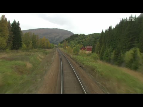 [9:56 Hours] Train Journey to the Norwegian Arctic Circle, FALL [1080HD] SlowTV