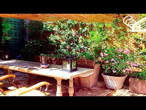 El jard n secreto un oasis en el centro de madrid youtube - El jardin secreto restaurante madrid ...