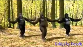 Download Soura song (dinaba Dinaban) funny dance MP3 song and Music Video