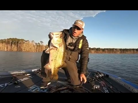 TOP 5 BIGGEST BASS CAUGHT IN TOURNAMENTS! (compilation)