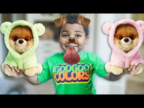 GOO GOO GAGA HAS A NEW DOG! LEARN TO SPELL DOG WITH GOO GOO COLORS PRETEND PLAY SKIT AND MORE