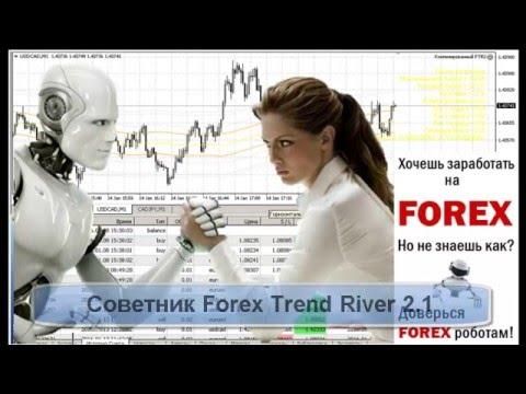 Как расставить уровни советника Forex trend River 2.1 .Настройка без оптимизации .