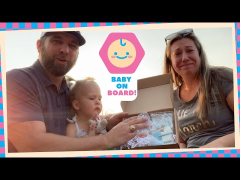 Couple Record Compilation Of Family's Reaction To Gender Reveal Cookies