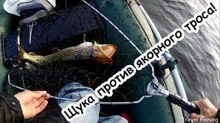 Ловля щуки под Киевом на 4-м шлюзе в ноябре/ Pike fishing near Kiev at the 4th gateway in November