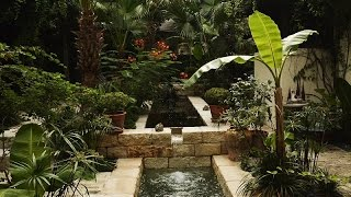 Spanish courtyard garden San Antonio  Claire Golden  Central Texas Gardener