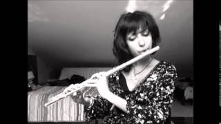 Meshuggah - Acrid Placidity { Solo Flute Cover }