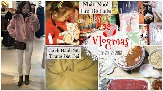 VLOGMAS 20-23,2018 ❅ Đi Nhận Nuôi Em Bé Lulu ❤︎ Mẹo Đánh Sốt Trứng Bất Bại ❅ HAUL Đi Chợ Hàn Quốc