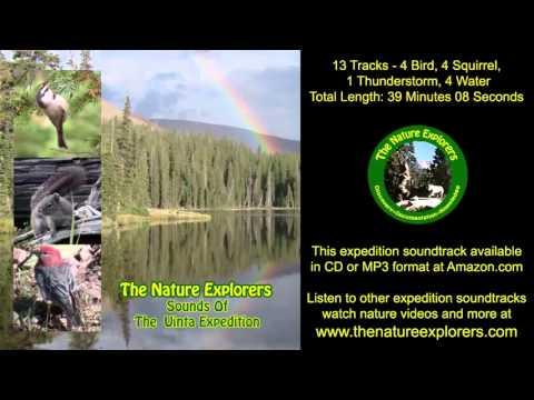 Uinta Expedition Soundtrack Utah, Birds, Squirrels, Thunderstorm Wildlife Nature Sounds MP3
