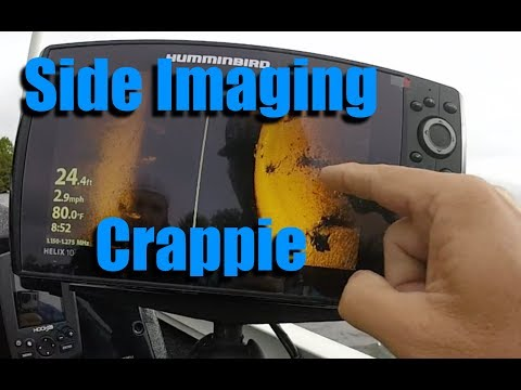 Fall Crappie On Side Imaging