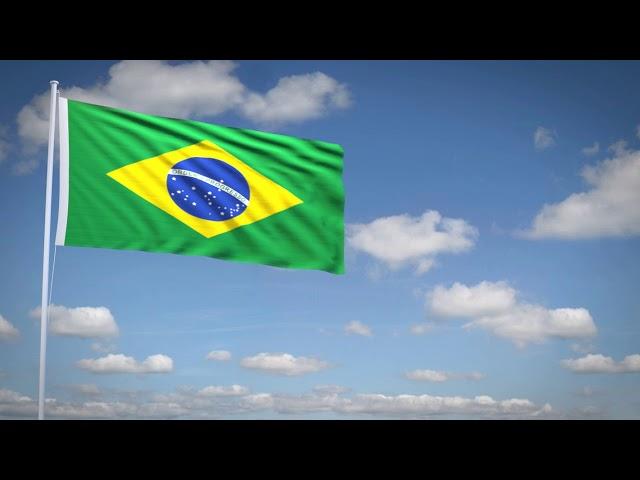 Studio3201 - Animated flag of Brazil