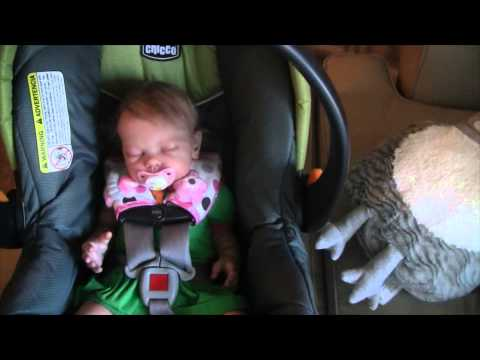 Day in the Life of reborn baby Zoe!