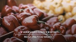 Harvard researcher: Food waste reduction key to combating climate change