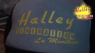 HALLEY GENERATION LA MINITECA