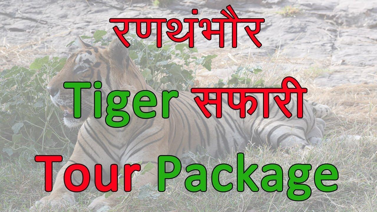 Ranthambore  tiger safari  | book Ranthambore jeep safari | Things to do Ranthanbore Rajasthan